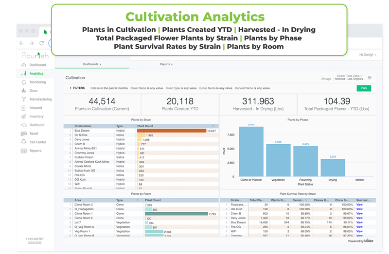 Cultivation_Flourish-Software-Analytics