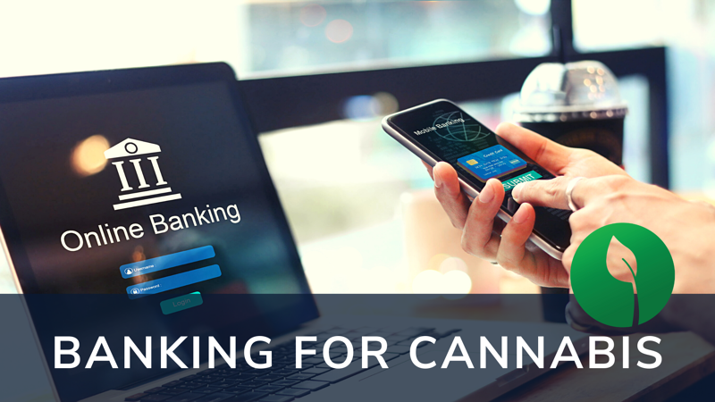 banking for cannabis