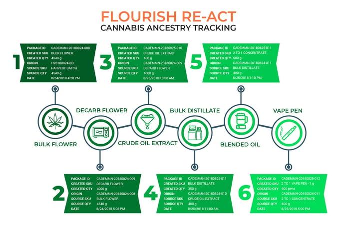flourish re-act v2