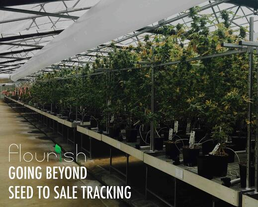 going beyond seed to sale tracking