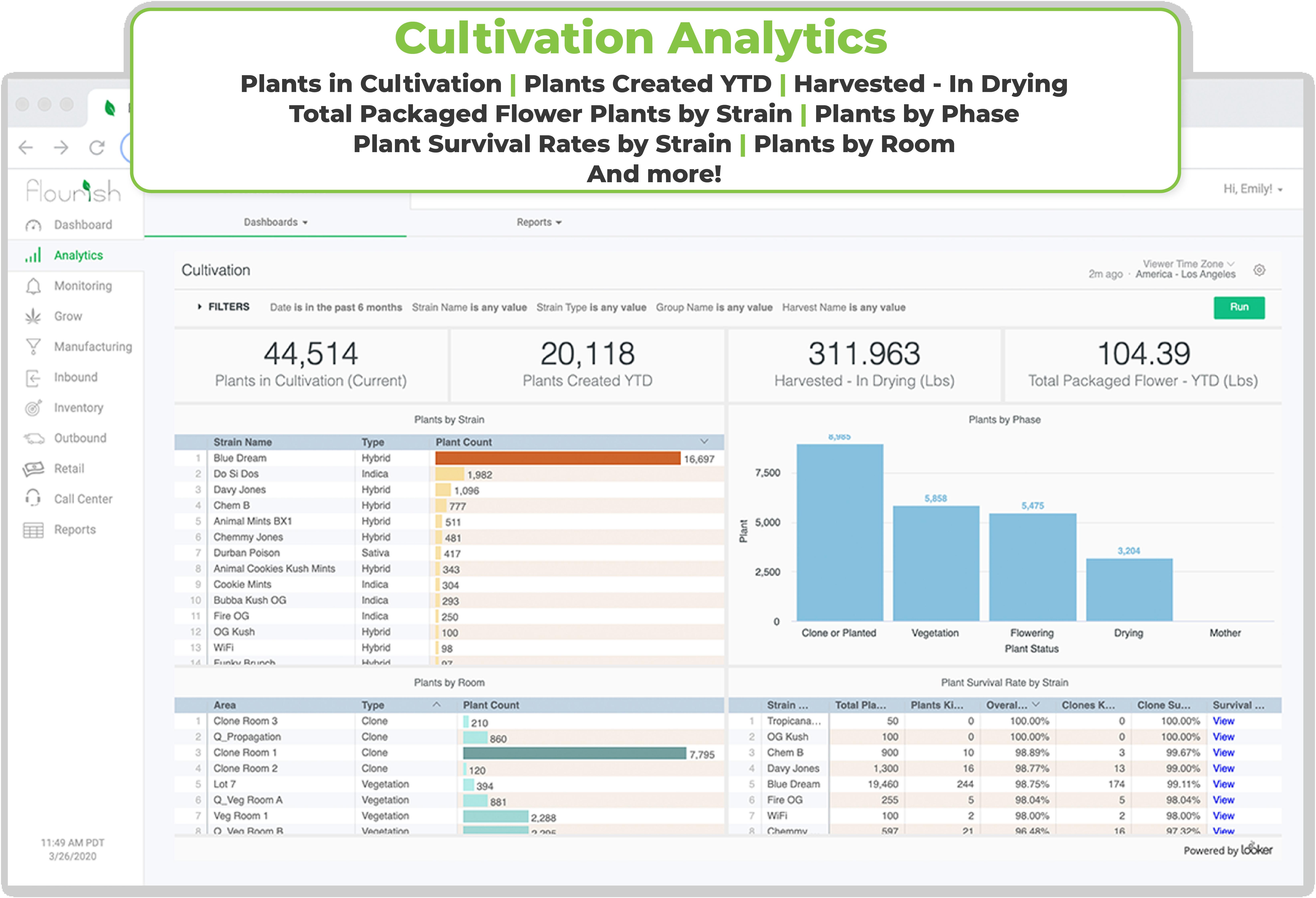 Cultivation Analytics_Flourish Software