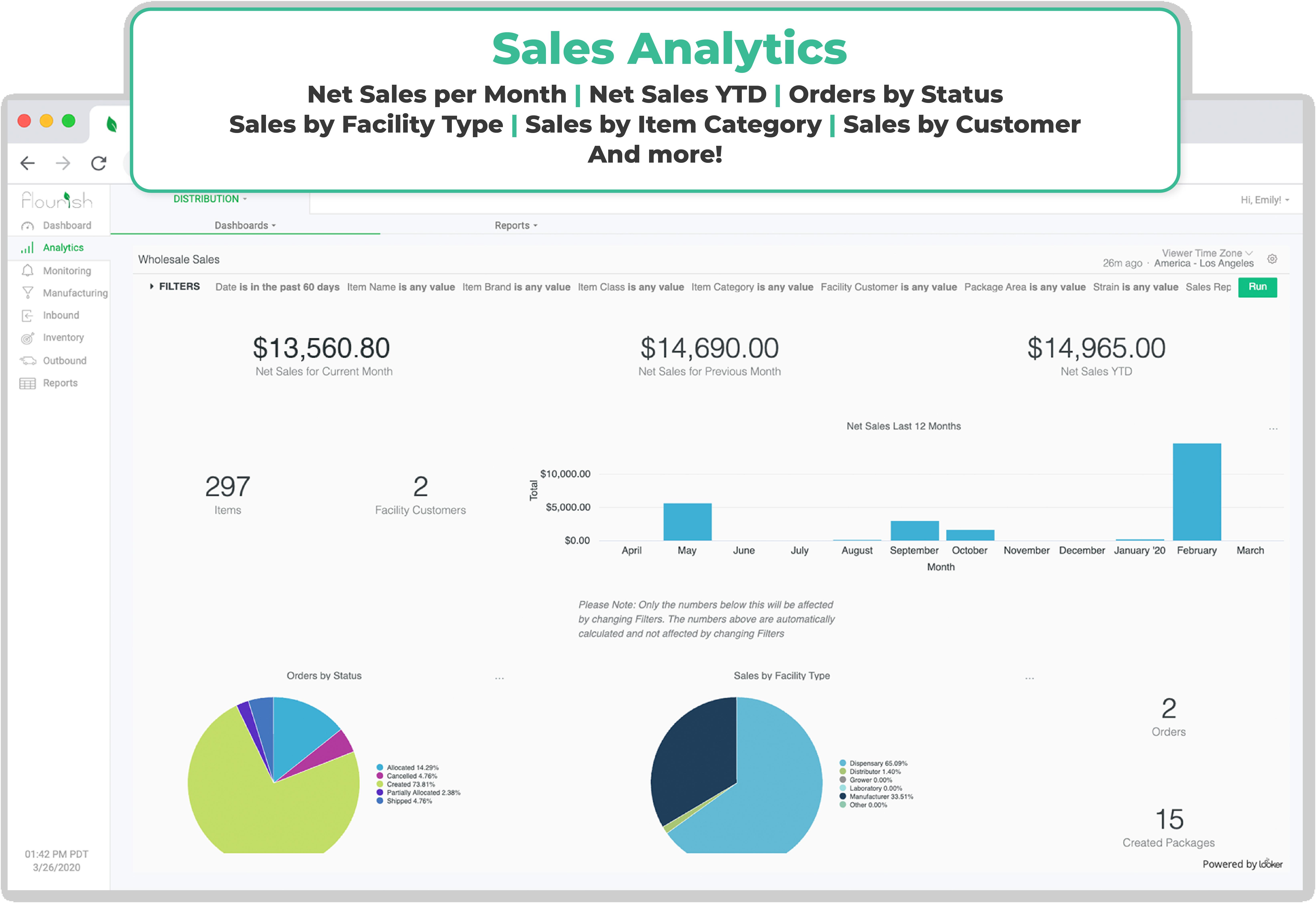 Sales Analytics_Flourish Software